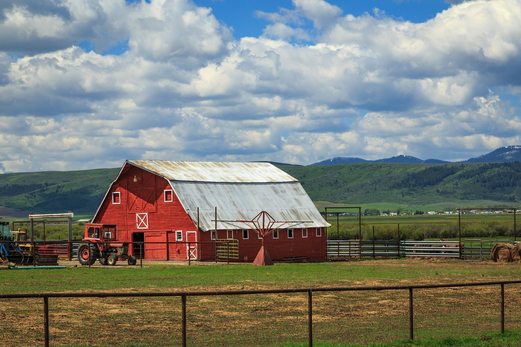 Farm: view of the barn with a truck in front